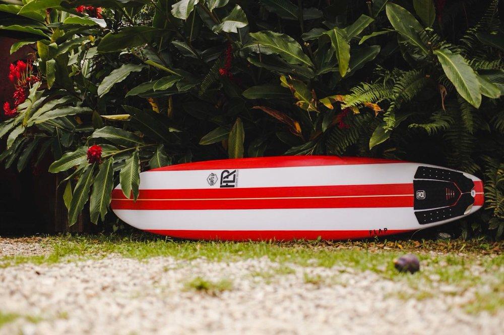 funboard flap.JPG