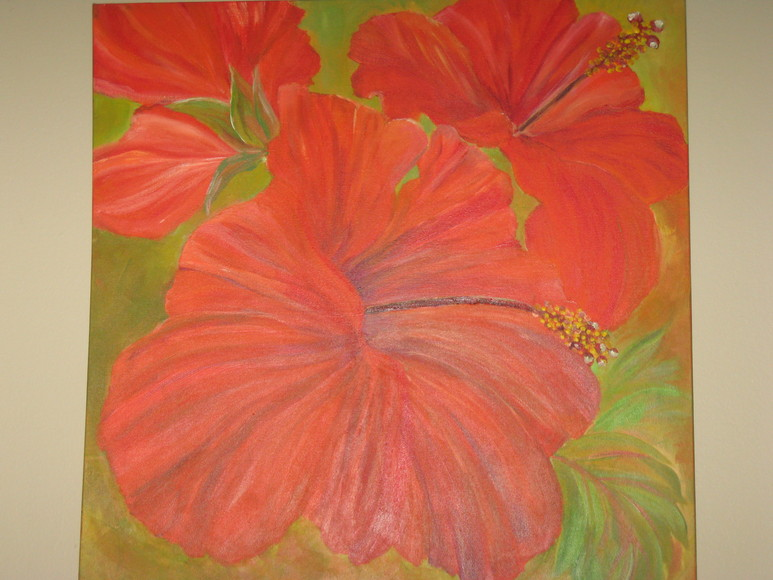 774_Red_Orange_Hibiscus_Southampton_Lee.JPG