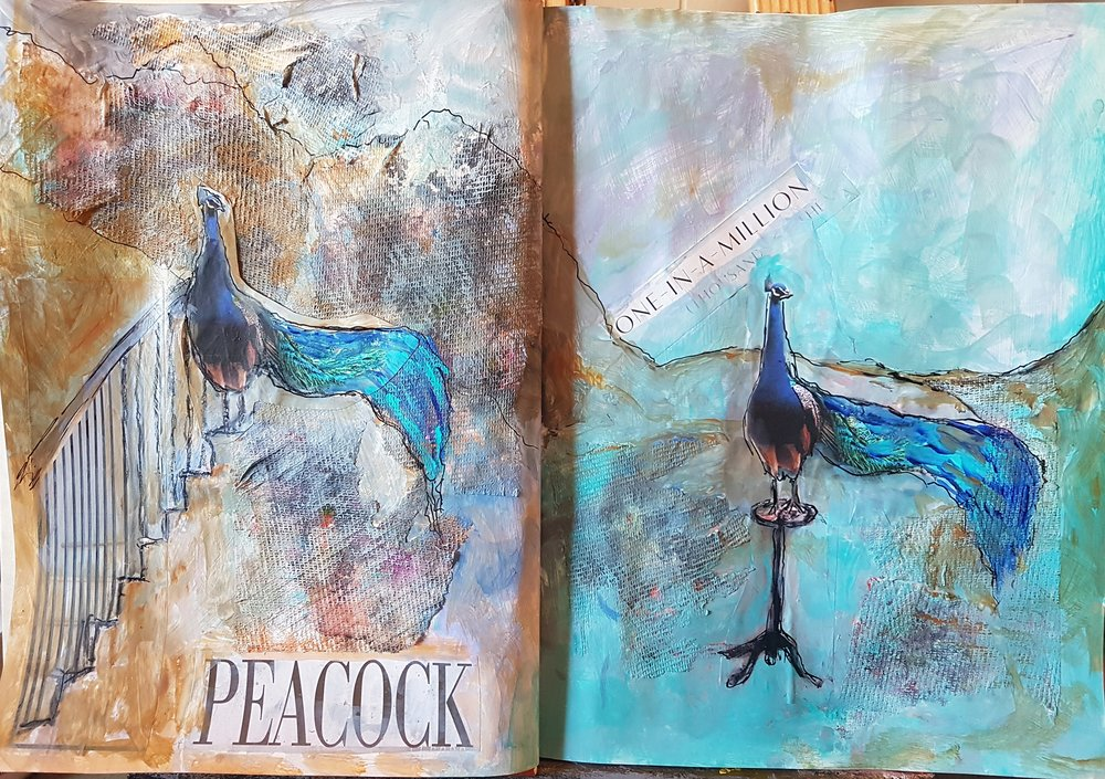 Journal Three PEACOCK March 11 2018 .jpg