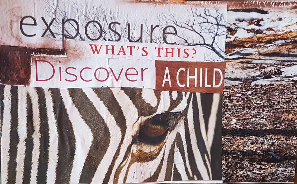 Fonda Forgiveness Postcards Exposure What's This Discover A Child Zebra .jpg