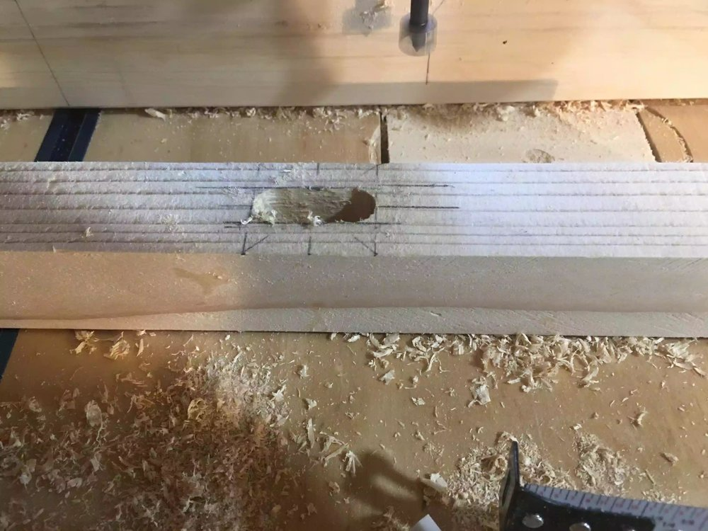 Here is a closeup off the holes created to define the mortise.
