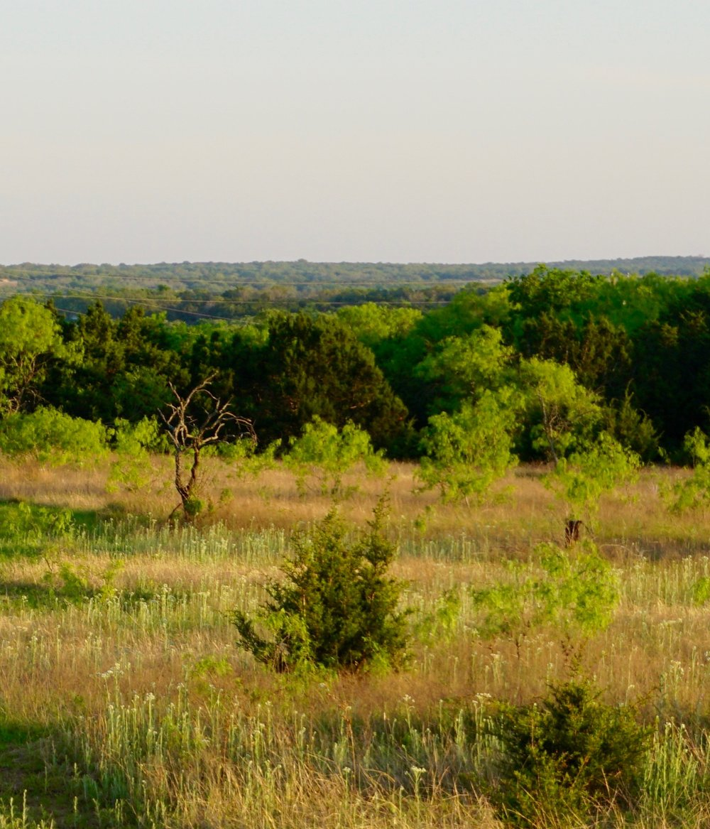 Horseshoe Bay Lot offered at $29,000 - 720 Mountain Dew Road* 80 x 130 ft* Hill Country views of spectacular Lake LBJ