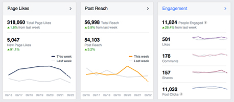 Social-media-analytics-Facebook-Page-Insights-overview.jpg