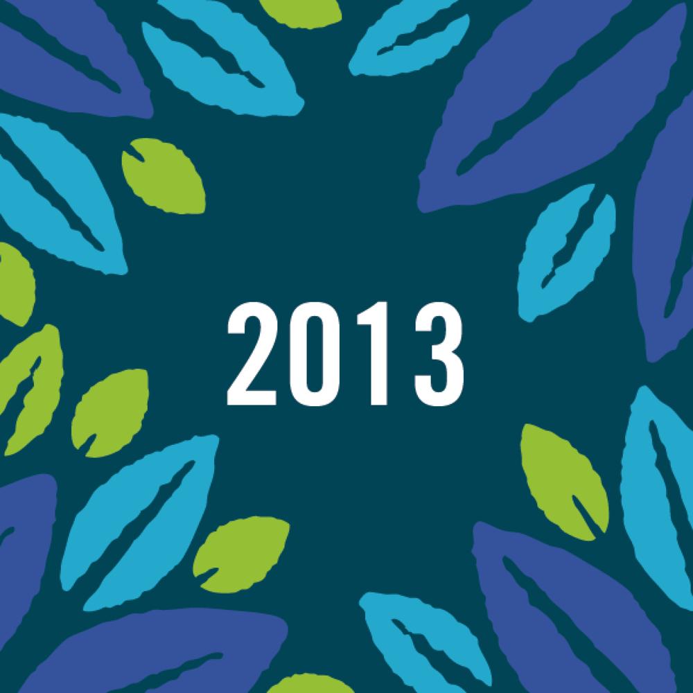 Amantani Trustees Report & Accounts 2013