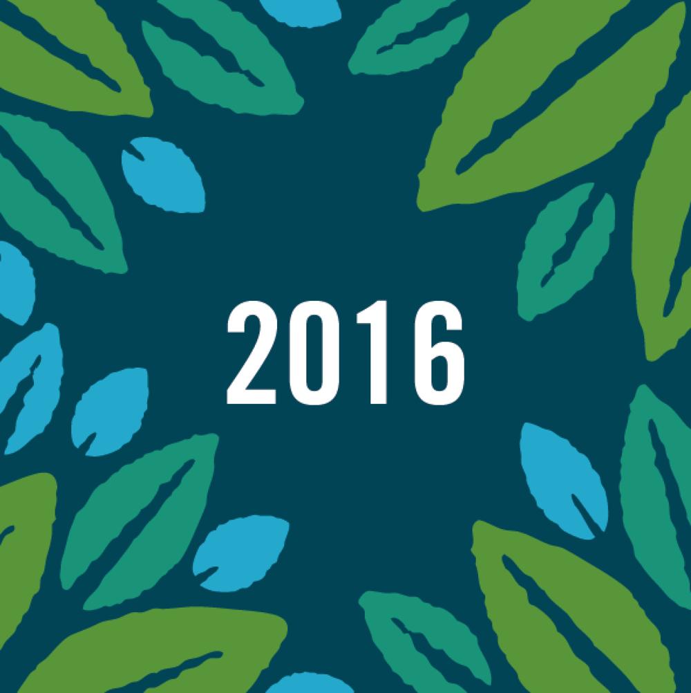 Amantani Trustees Report & Accounts 2016