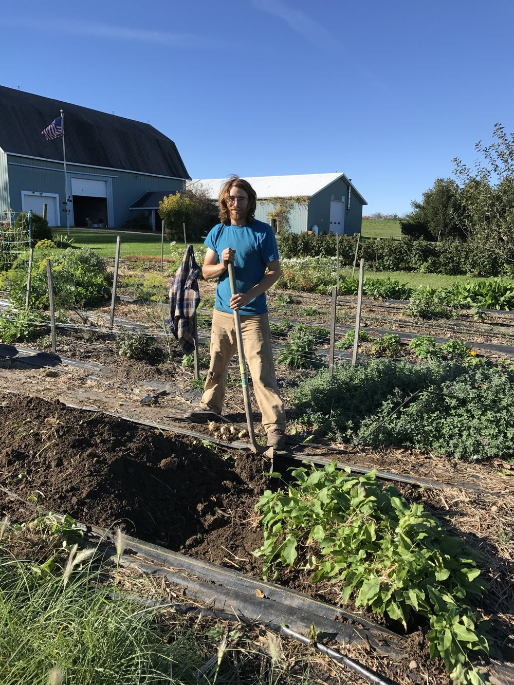 Nick   Nick has been working on the farm since 2012. He has an extensive knowledge base in farming and permaculture design, and is being mentored by Hal on mechanical skills.  He owns his own property which he is turning into a farm.  He is a valued member of our team year round.