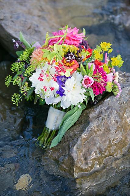 laure lillie photographie