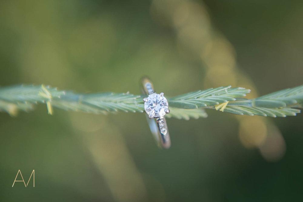 AshleighMillerWeddings-Engagement-MeredithDavid-Boulder-Colorado-2035.jpg