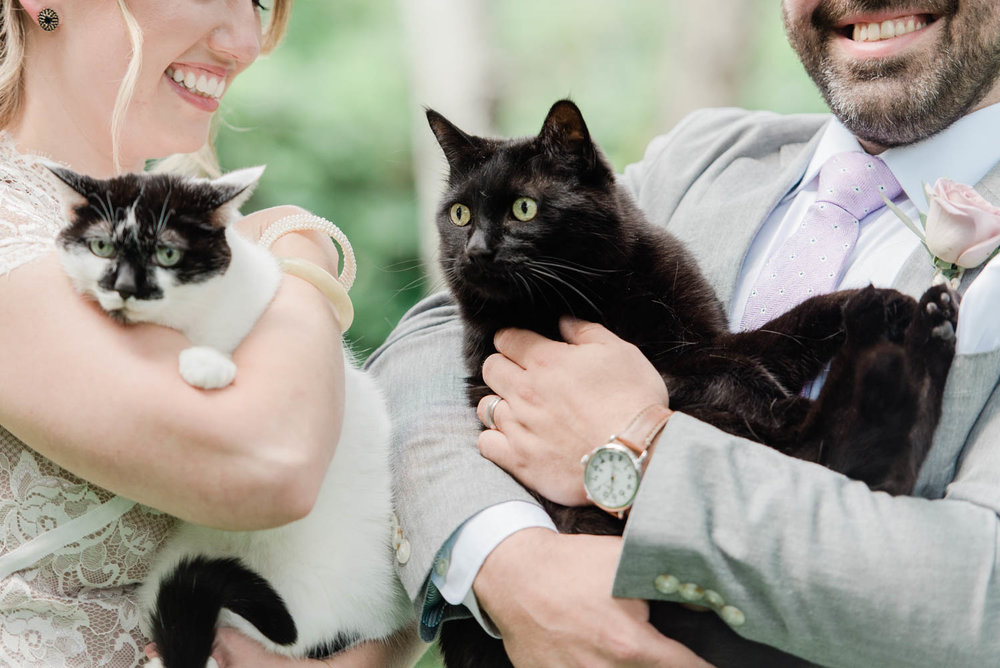 Including their cats in the wedding ceremony.