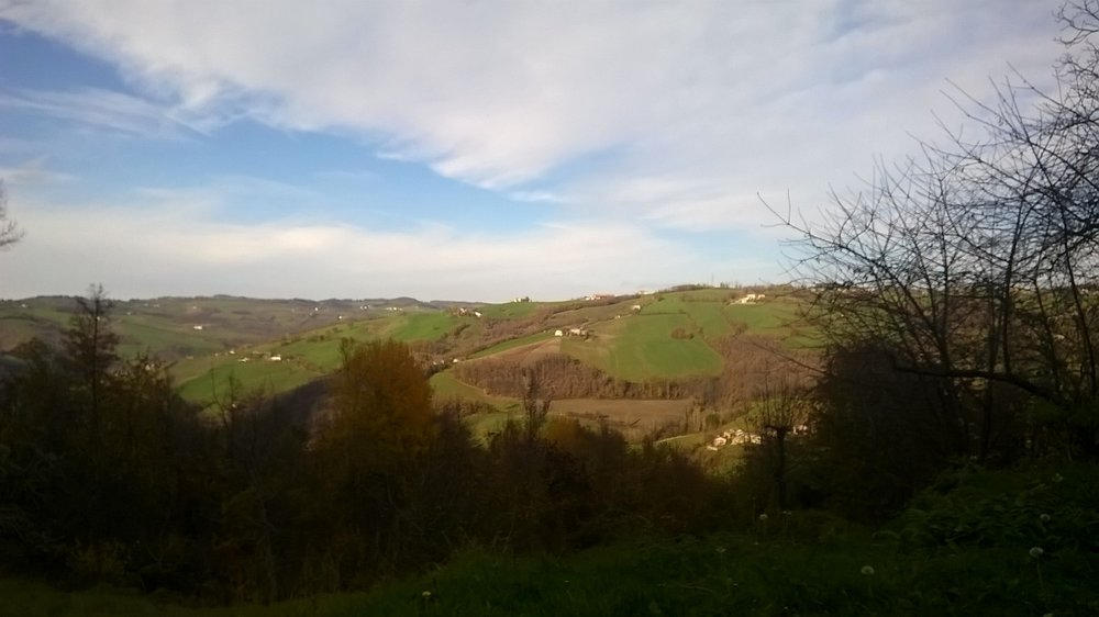 Campagna - Appennino modenese