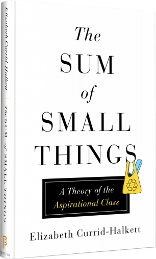the sum of small things.jpg