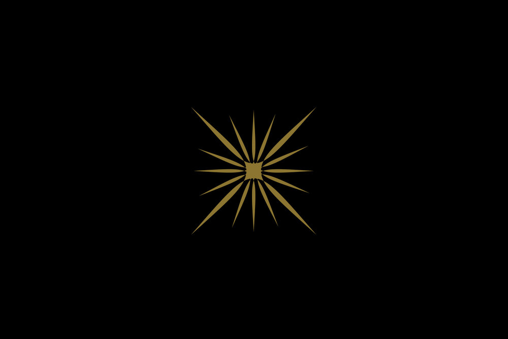 LP_star-black-background-small-slide.jpg