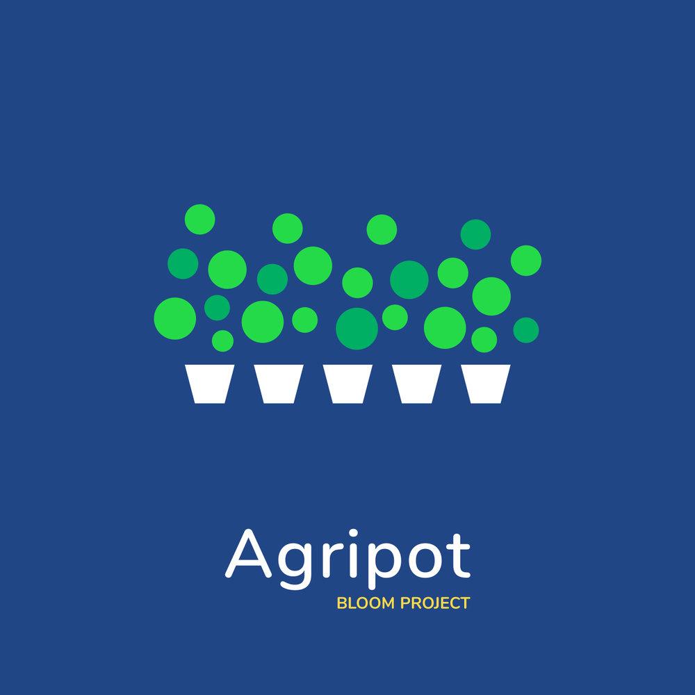 Bloom-Project-T1.jpg