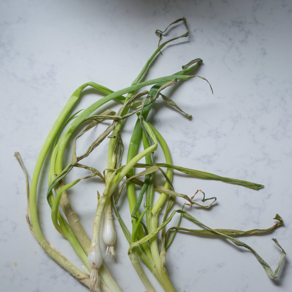 wilted scallions