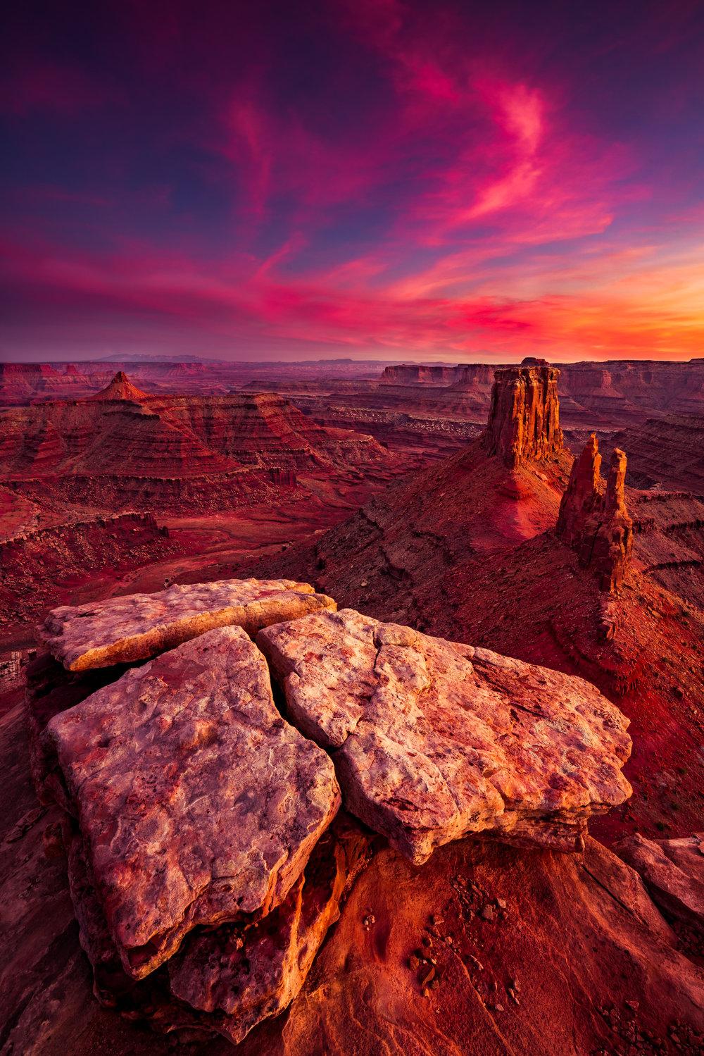 Desert Solitaire Squarespace.jpg