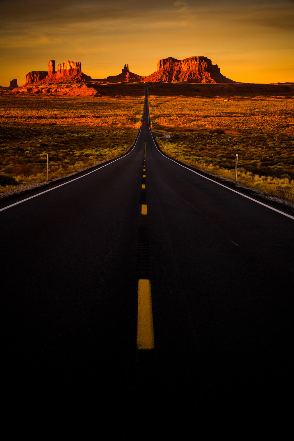 The Long Road Home Squarespace.jpg