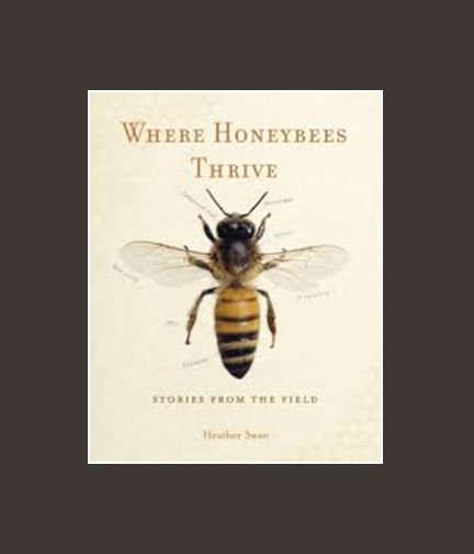 Chippewa_Valley_Book_Festival_Where_Honeybees_Thrive.jpg