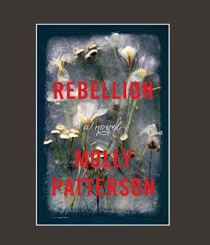 Chippewa_Valley_Book_Festival_Rebellion.jpg