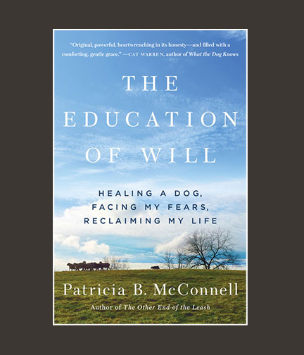 Chippewa_Valley_Book_Festival_Education_of_Will_Paperback.jpg