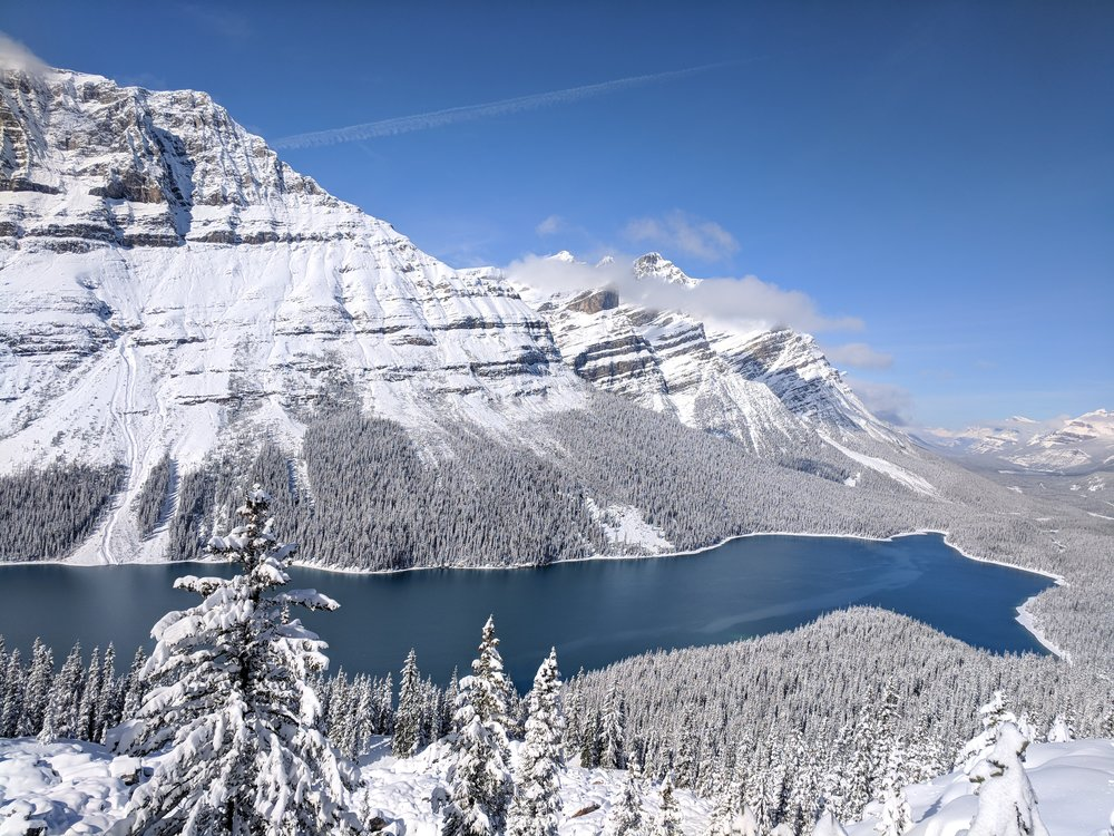 peyto-lake-hike-jasper-national-park-geek-travel