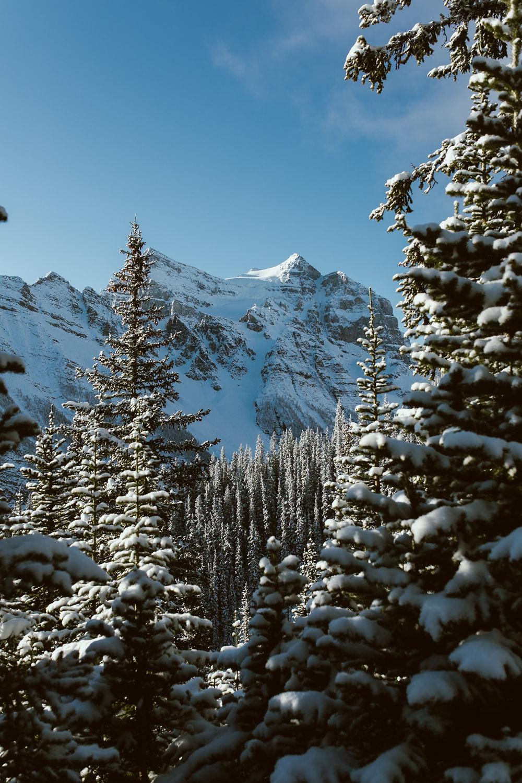 Banff_231.jpg
