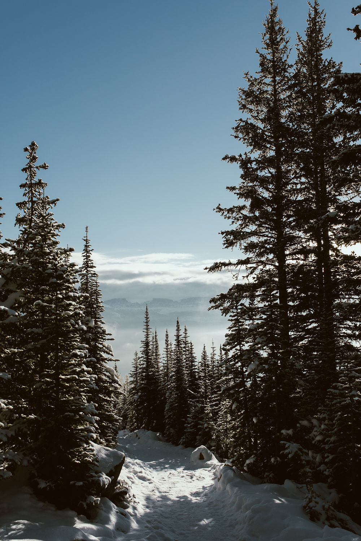 Banff_233.jpg