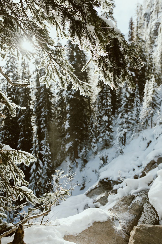 Banff_235.jpg