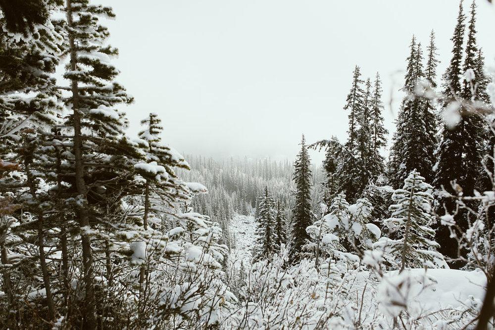 Banff_240.jpg