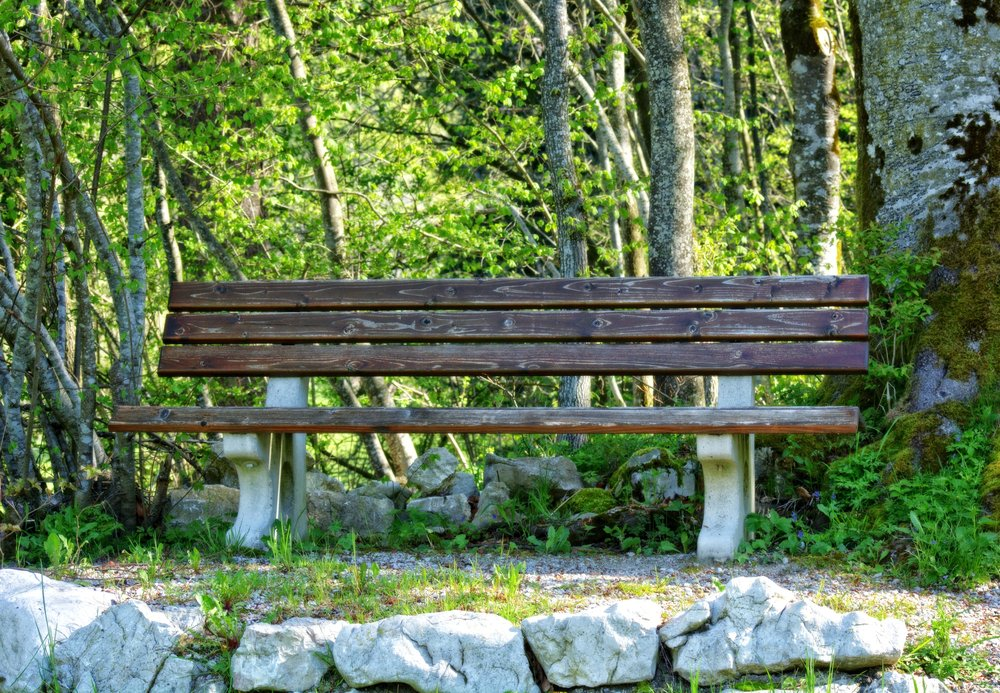 adventure-bench-daylight-257408.jpg