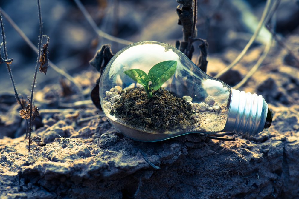 Environment - What We Believe: