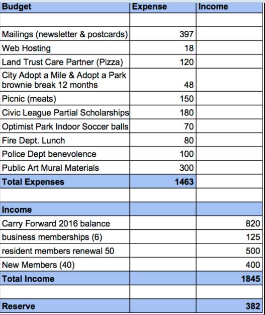 NEHCA budget.png