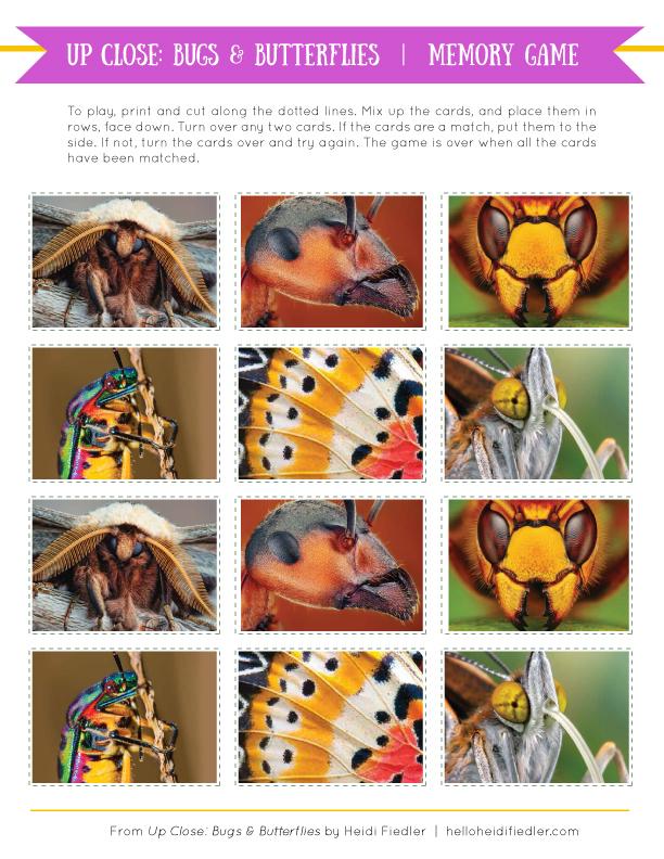 BugsandButterflies-memorygame.jpg