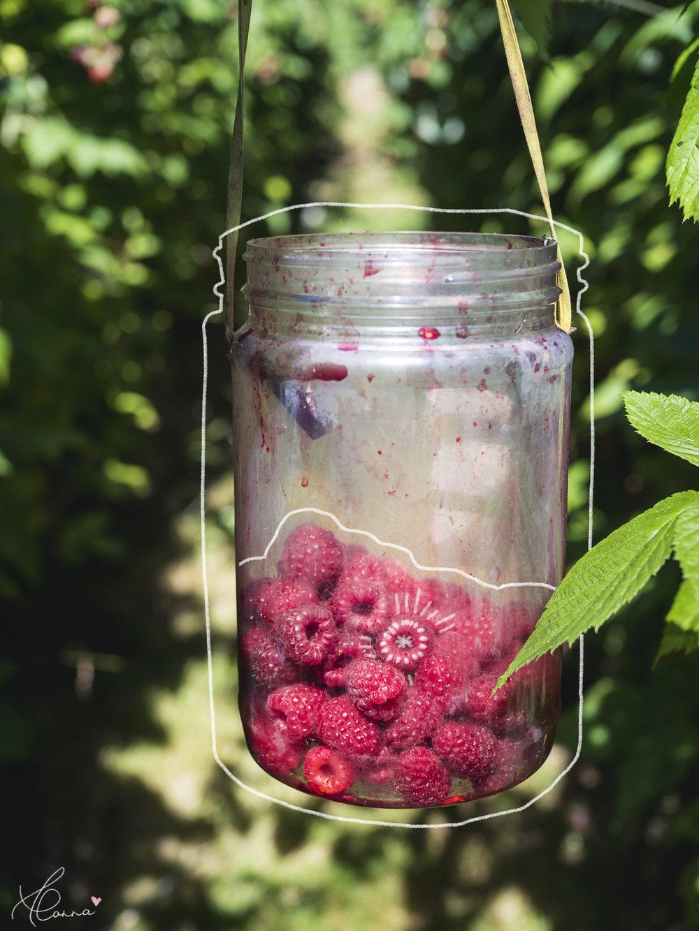 Berry_Jar.jpg