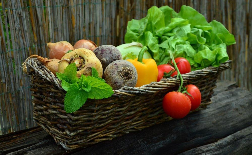 Backyard GardenShare - Food Sharing
