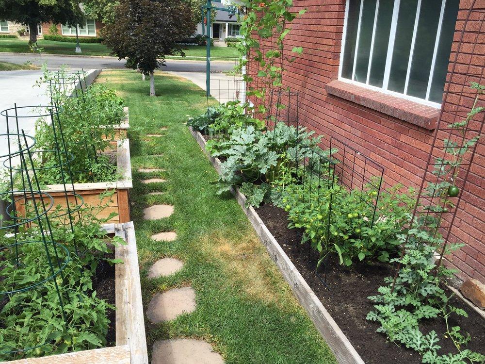 Backyard GardenShare - Homegrown Garden Surplus