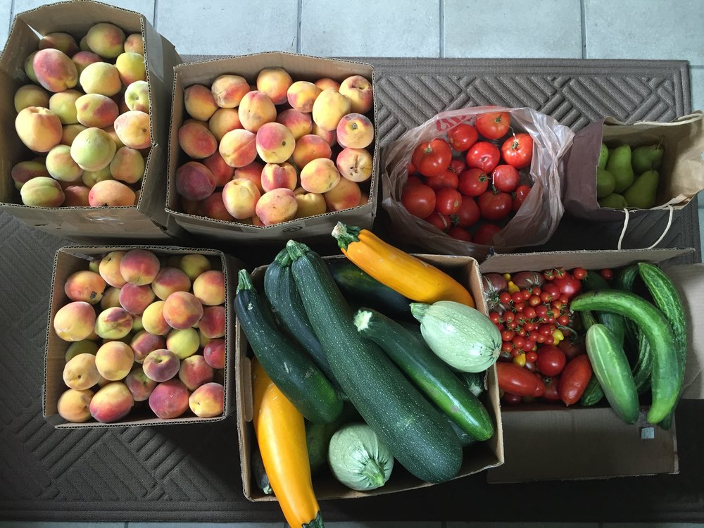 Backyard GardenShare - Become a Courier