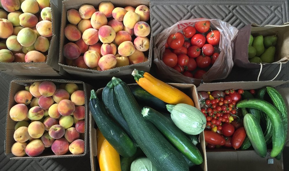 Backyard GardenShare quickly redistributes fresh vegetables and fruits to those who don't have access, helping to maintain nutritional value.