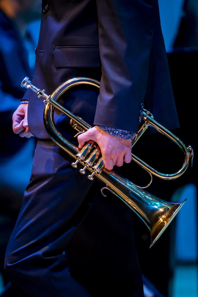VLS-20180913-Jazz Bands-3-_VLS0800.jpg