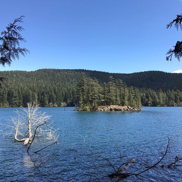 Enjoying a sunny family hike at #mountainlake — our last Saturday before farmers market season starts next weekend! . We will be pouring dozens of candles tonight in prep for next Saturday! . . . . #pnwonderland #sanjuanislands #orcasisland #pnw #makersgonnamake #forestbathing