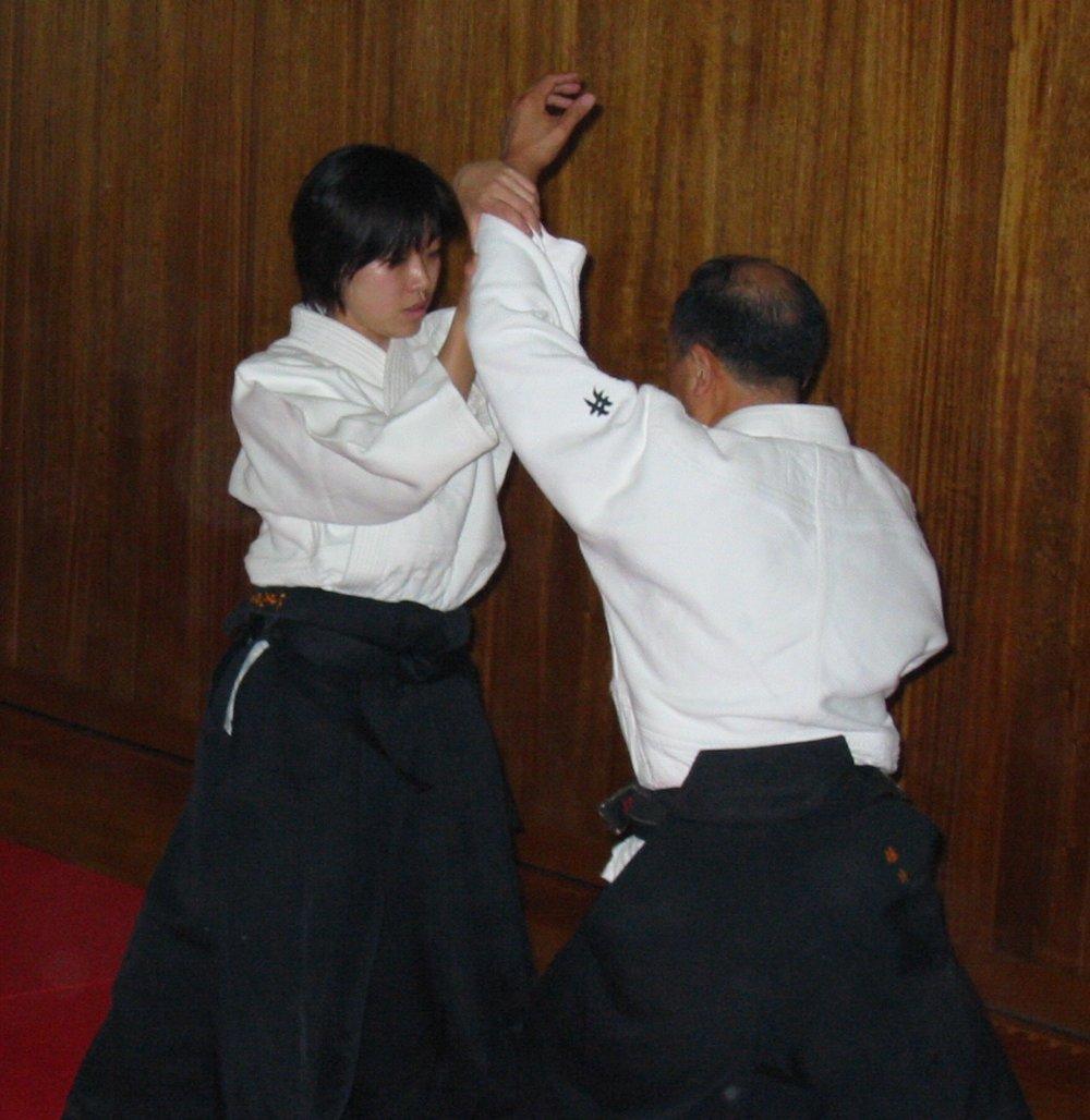 aikido_japan1.JPG