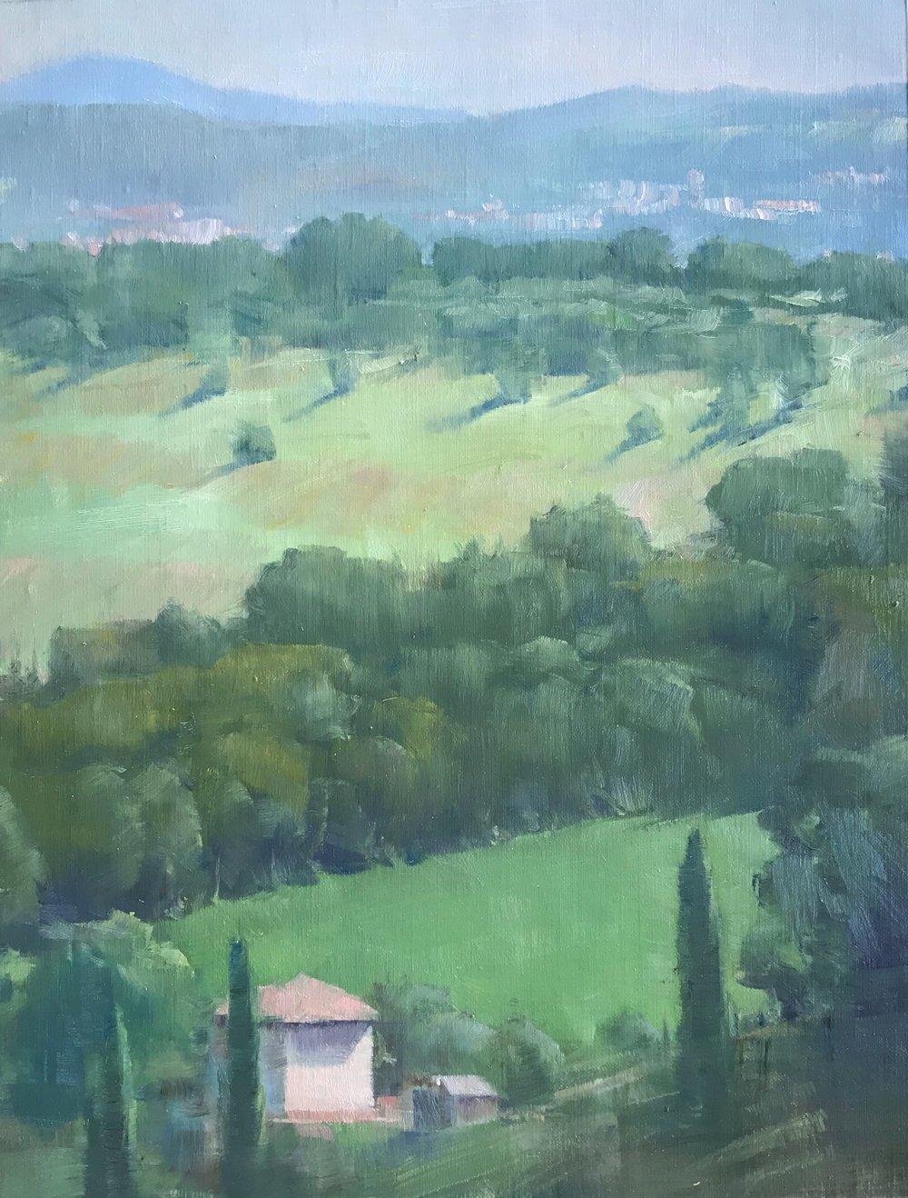 Italian Greens, View from Otricoli