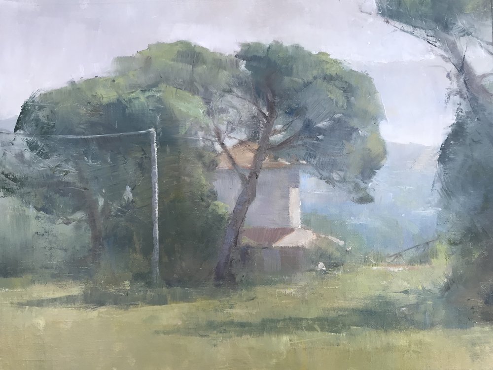 Pine Trees and House in Civita