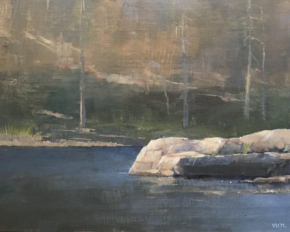 Y Meadow Lake