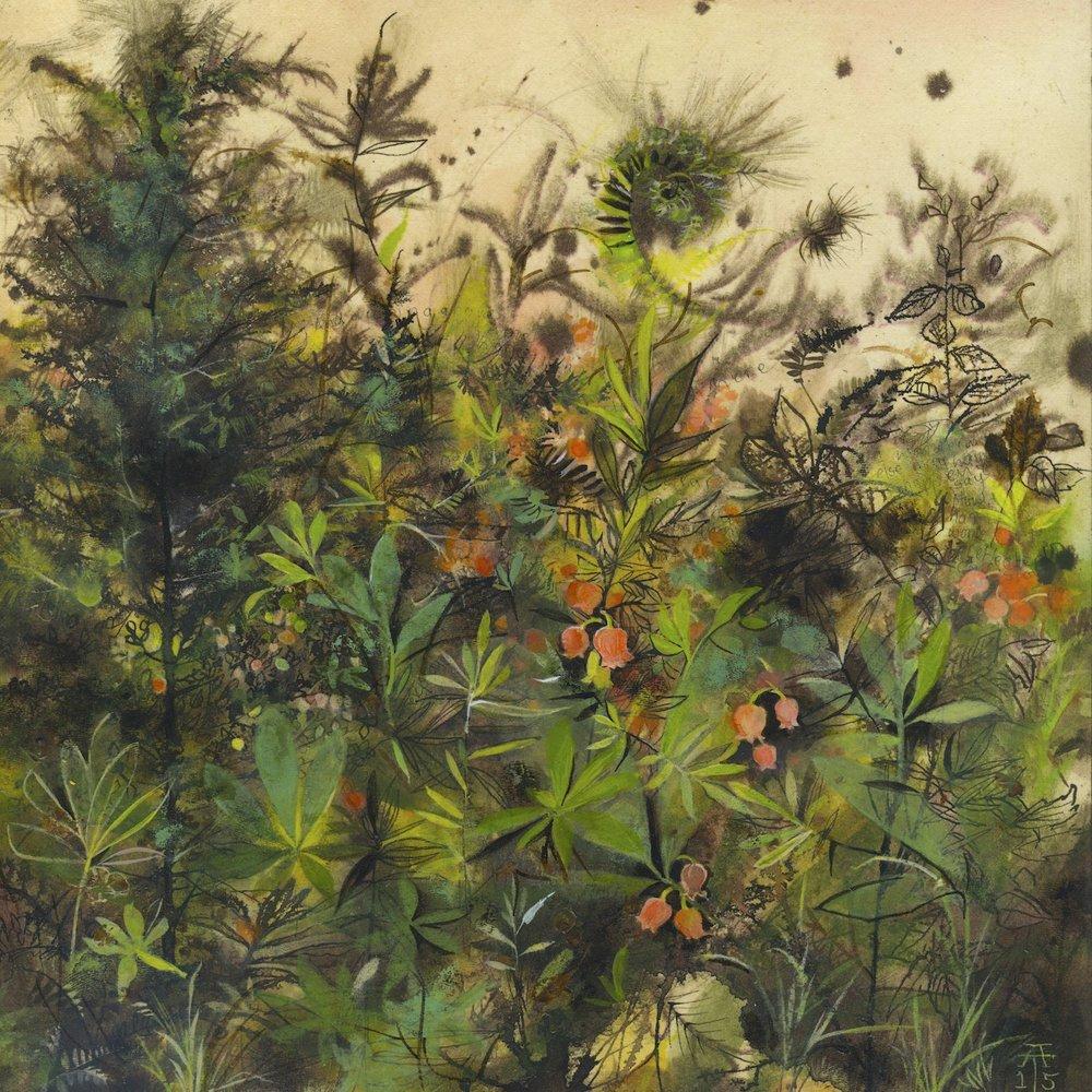 Copy of Field Studies: Menziesia ferruginea