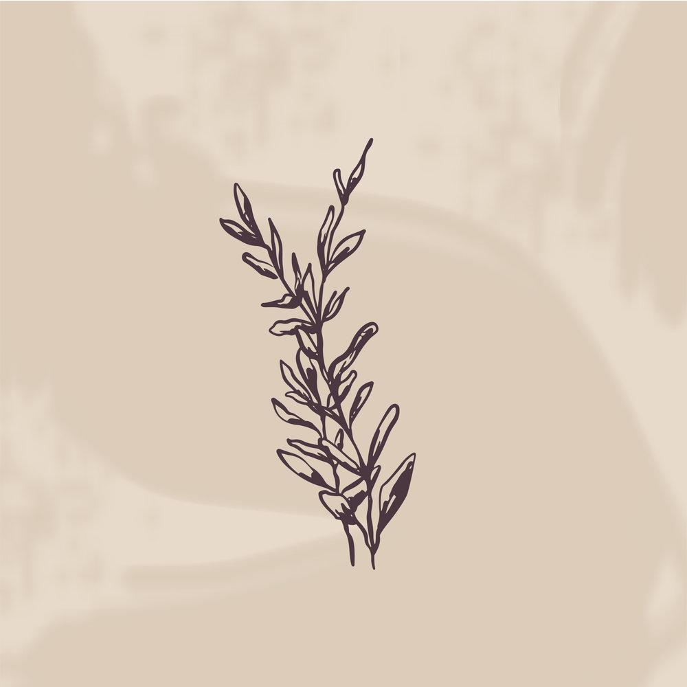 Preserved-leafsymbol-eggplantalmond.jpg