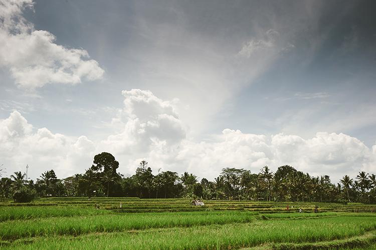 Bali-119