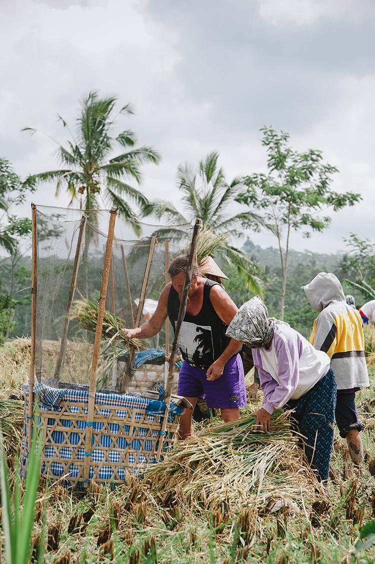 Bali-98