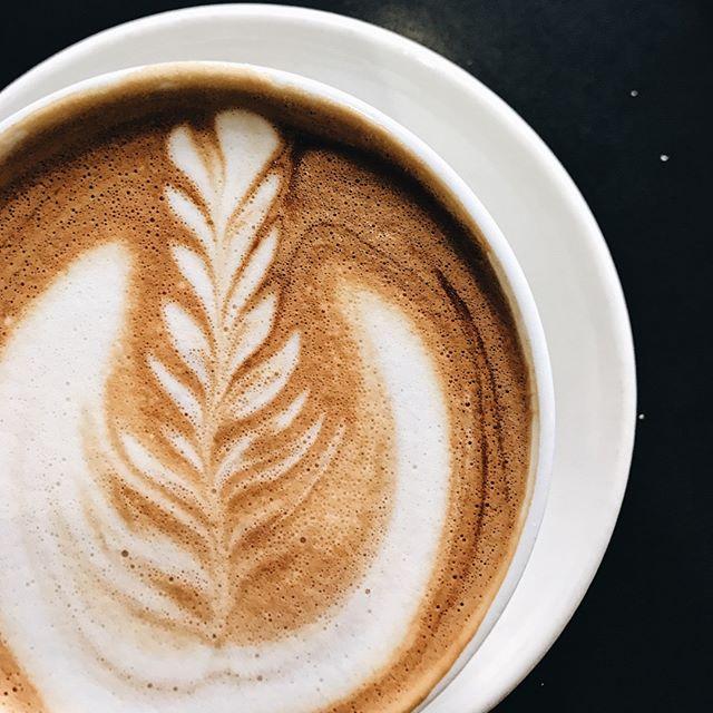 Before my morning coffee: 😴😨🥵 vs. After my morning coffee: 🤩🤠🤑. Who can relate?⠀⠀⠀⠀⠀⠀⠀⠀⠀ Even the most dedicated business babes need a little caffeine kickstart, am I right?⠀⠀⠀⠀⠀⠀⠀⠀⠀ •⠀⠀⠀⠀⠀⠀⠀⠀⠀ •⠀⠀⠀⠀⠀⠀⠀⠀⠀ •⠀⠀⠀⠀⠀⠀⠀⠀⠀ •⠀⠀⠀⠀⠀⠀⠀⠀⠀ •⠀⠀⠀⠀⠀⠀⠀⠀⠀ #savvybusinessowner #womeninbusiness #savvybusinessowners #ladyboss #femaleentrepreneur #womeninbiz #girlboss #communityovercompetition #bossbabe #beingboss #womensupportingwomen #creativeentrepreneur #calledtobecreative #buildyourempire #bossbabes #womenwhohustle #growyourbusiness #goaldigger #entrepreneurlife #womenempoweringwomen #risingtidesociety #mycreativebiz #tnchustler