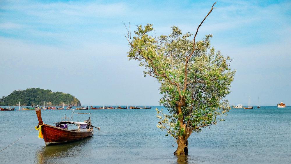 A Long-tail boat in Krabi