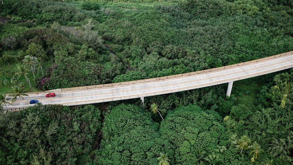 A highway cuts through the vegetation in Kauai